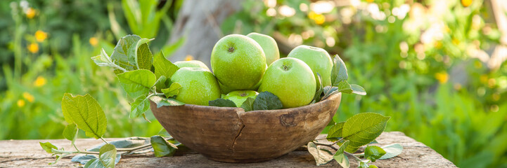 apples in an old wooden bowl on a wooden bench in a garden, selective focus, style a rustic