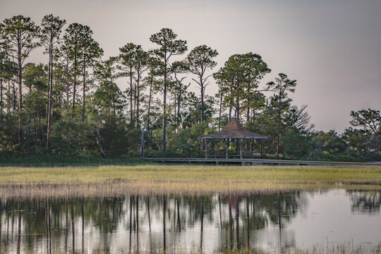 Hunting island south carolina beach scenes