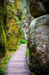 A narrow path through the rock formation valley, Czech Republic