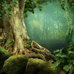 Printed kitchen splashbacks Jungle Landscape with weird old tree, roots, mossy rocks, blue haze in mysterious fairytale forest