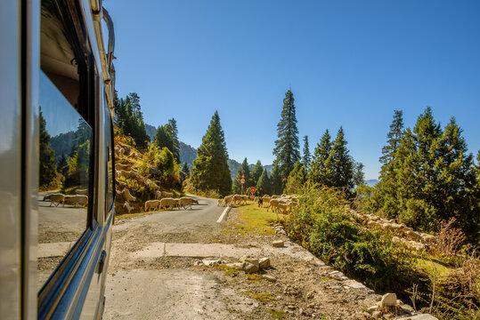 View from hilly mountain road travelling through Himalayas mountains near Munsiyari, Uttarakhand, India.