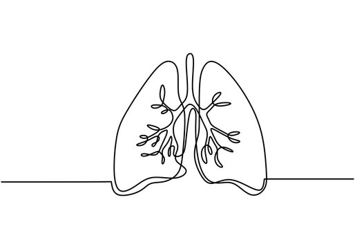 Single continuous line art of lungs. Lungs human organ one line illustration. Element of human parts for mobile concept and web apps icon. Minimalist lungs design contour drawing. Anatomy concept.