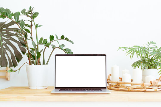 Modern trendy home office workplace with green plants and boho interior decor background. Still life composition