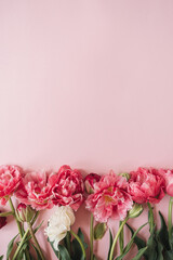 Beautiful peony tulip flowers bouquet on pink background