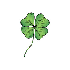 Clover sketch. Hand drawn green four leaf clover. Vector illustration, isolated on white