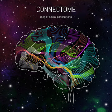 Neuroscience infographic on space background. Brain cells connectome concept.Neural network, neurons forming a complex map for mind and thinking