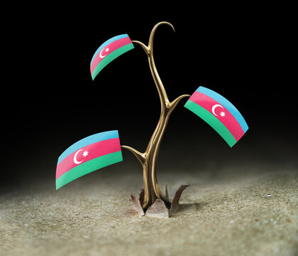 3d sprout with Azerbaijan flag on black