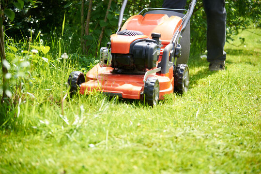 a close-up lawnmower mows the green grass on the lawn.Bright Sunny day