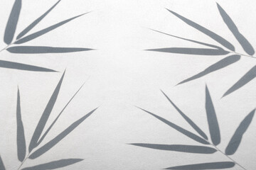 shadows of bamboo leaf on white wall concrete surface texture background