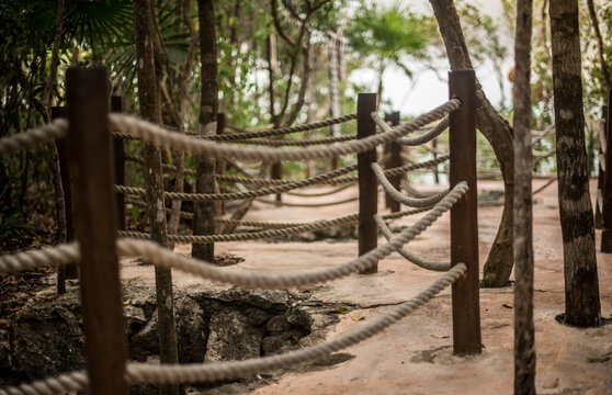 Path at the beach and through the jungle