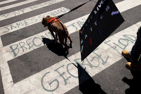A man walks his dog through a crosswalk spray-painted with the names of George Floyd and others as people gather outside Lafayette Square to view the scene where protesters clashed with police near the White House in Washington