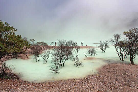 Kawah Putih or White Crater is a famous sulfur rich volcanic crater lake in West Java, Indonesia.