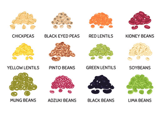 Set of hand drawn vector handful of beans and legumes