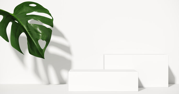 Minimal cosmetic background for product presentation. Tropical green leaves of monstera philodendron with white step background. 3d render illustration.