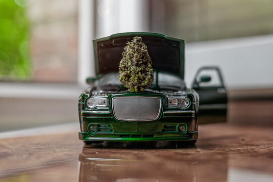 Large trichomes bud of marijuana under the hood of a small car model. Cannabis girl scout cookies, creative