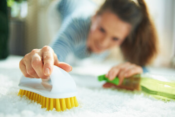 woman with cleaning agent and brush clean carpet