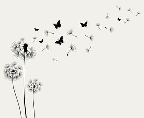Dandelions and butterfly on the wall background