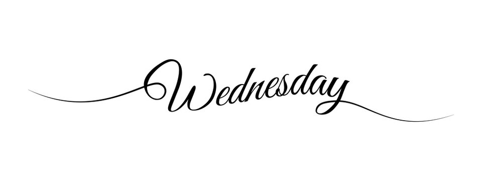 wednesday letter calligraphy banner vector