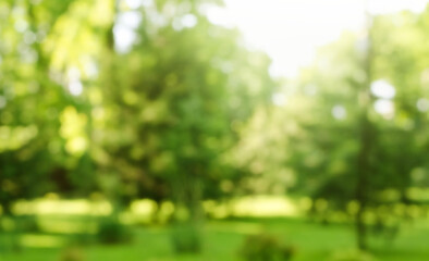 Foto op Canvas Tuin Blur defocused park garden tree in nature background