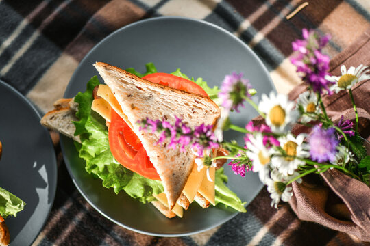 Picnic with sandwiches in park or forest. Toast bread, cheese, ham, sausage, tomatoes, salad leaves. Weekend party, sunny day