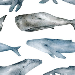 Watercolor seamless pattern with whale. Humpback, Cachalot, Blue whales. Realistic underwater animal. Marine mammal for baby textile, wallpaper, nursery decoration. Antarctic series. - 356641846