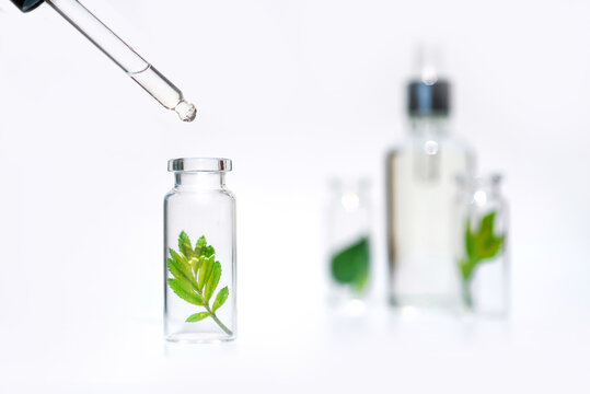 Bottles with herbs, natural essential oil, organic cosmetics on white background
