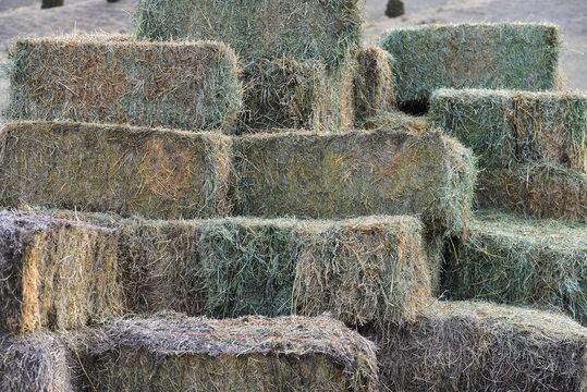 A haphazard stack of hay bales.