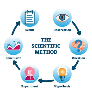 The scientific method vector illustration. Labeled process methodology scheme