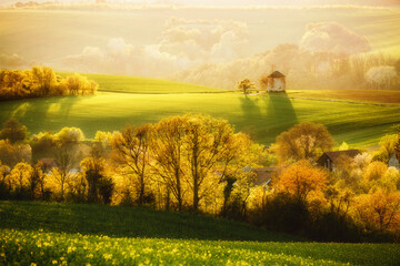 壁紙(ウォールミューラル) - Majestic rural landscape with an old mill. Beautiful sunlight on the wavy fields Kunkovice village.