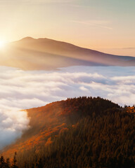 Wall Mural - Breathtaking morning moment in alpine foggy valley.