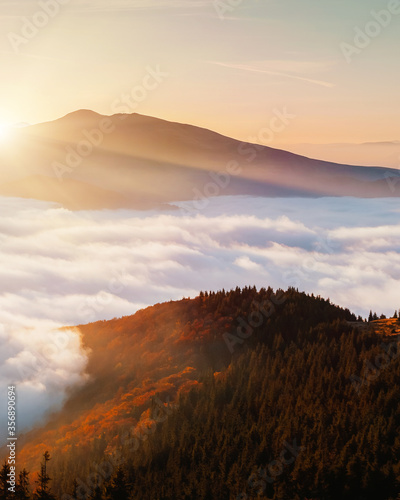 Wall mural Breathtaking morning moment in alpine foggy valley.