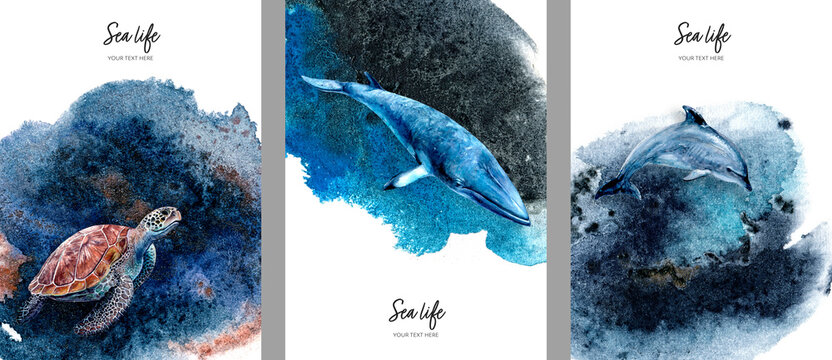 Set of cards invitation design template with whale, dolphin, turtle watercolor hand drawn illustration