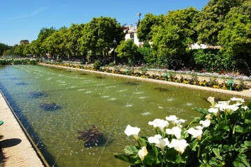 Water garden at the Palace Fortress of the Christian Kings (Alcazar de los Reyes Cristianos), Cordoba, Andalusia, Spain.