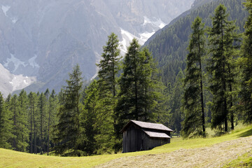 Alpine landscape in South Tyrol with a wooden hut, Alps, Italy