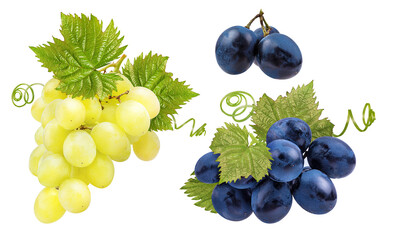 Fototapete - Fresh green grapes isolated on white background