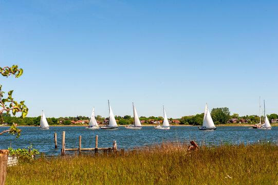 Segelboote auf der Schlei vor der Stadt Arnis , Schleswig-Holstein, Deutschland