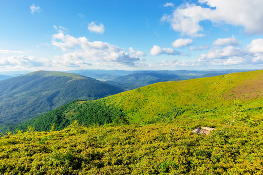 wonderful mountain landscape in summer. beauty of nature in green and blue. meadows on rolling hills of the rindge. wonderful weather in warm light. blue sky with puffy clouds
