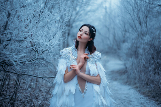 Young woman snow queen. Fantasy cape, white feathers. Creative clothes sexy dress. Fashion model beautiful face. Elven cloak, princess in winter forest, trees in hoarfrost, snow. Silver Tiara Circlet