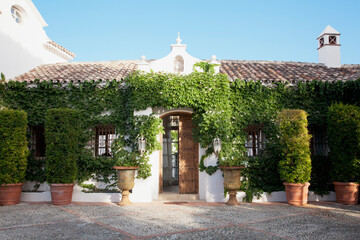 Potted topiaries and ivy surrounding villa entrance