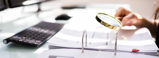 Auditor Investigating Corporate Fraud