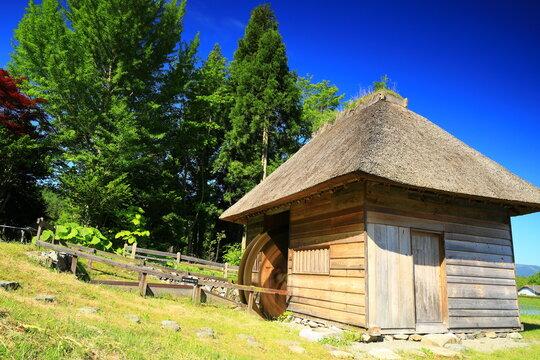 新緑の山口の水車小屋