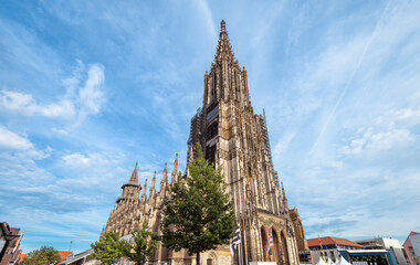 Fototapete - Ulm Minster or Cathedral of Ulm city, Germany. It is medieval tourist attraction of Ulm. View of old Gothic cathedral on blue sky background