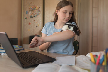 Teen girl playing with animal, rat mouse, rest break, video call, show off animal, laptop monitor, e-education Internet lessons, distance learning. Entertainment between online video tutorials.