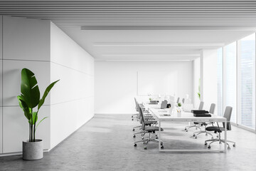 Photo sur Toile Inde White panoramic open space office interior