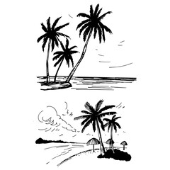 Hand drawn landscapes with palm trees. Vector sketch  illustration.