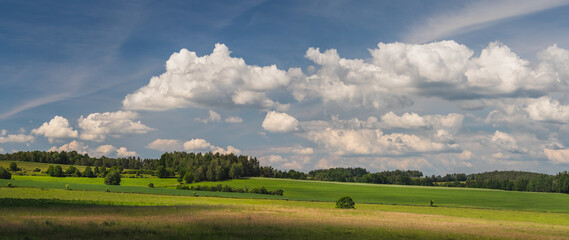 landscape with blue sky and clouds - panorama of rural countryside with field and forest