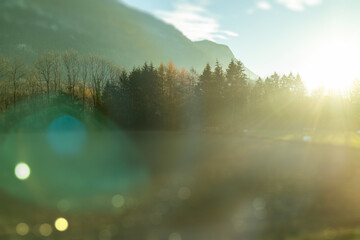 Wall Mural - Blurred natural landscape in the sunny light in autumn day, Austria.