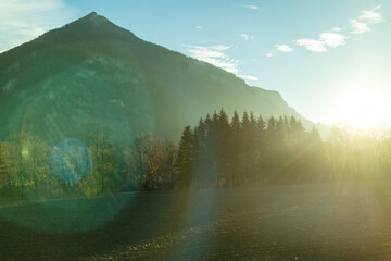 Wall Mural - Mountain landscape with forest area on a background of sun light, Austria.