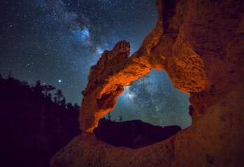 Garden Poster Brown Night Sky above Bryce Canyon with the Milky Way, Utah, USA.