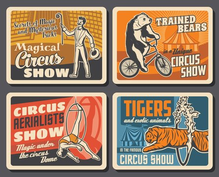 Circus performers, animals, chapiteau carnival top tent vector retro posters of circus show. Magician showing tricks, trapeze girl acrobat under dome, bear riding bicycle and tiger jumping trough ring